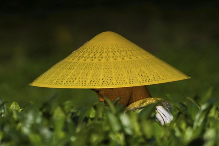 Una mujer trabaja en un campo de cultivo en un valle entre las ciudades de Zunyi y Maotai (China).