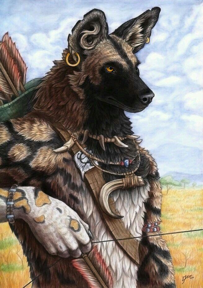 Archer wild dog
