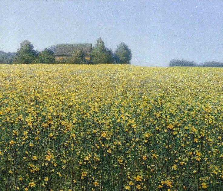 Rapeseed, 2013, oil on canvas, 50x60 cm  landscape by Daniil Belov