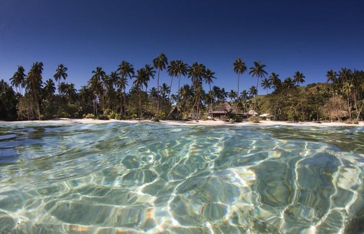 Mango Bay Resort   Coral Coast   Fiji Islands
