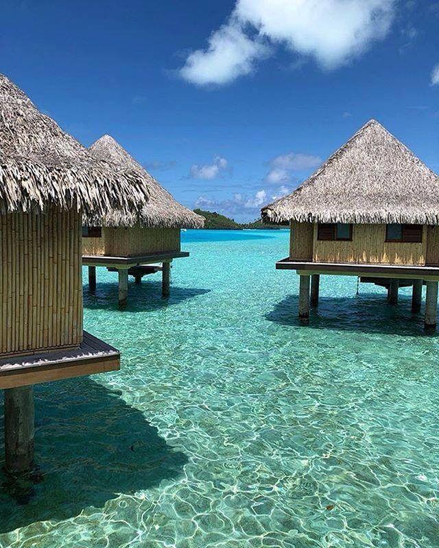 « We found paradise on earth » via TripAdvisor 📷 :@morgan_dio  lemoana.intercontinental.com #ICMoana #BoraBora #FrenchPolynesia #InterContinentalLife #paradise #dreaming #Sunset #pink #lagoon #blue #beach #whitesand #palmtrees #holiday #honeymoon #travel #traveling #instatravel #resort #relaxing #luxuy #luxurylifestyle #dream #explore #discover #nature #naturephotography #instadaily #dailypicture