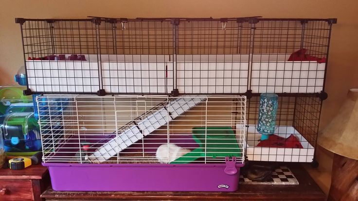 How can i make this i would love to expand kiwi 39 s cage for Guinea pig cage for 3