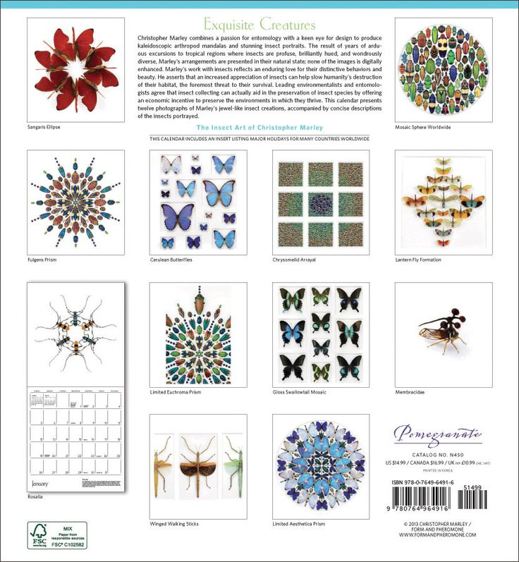 Exquisite Creatures: The Insect Art of Christopher Marley 2014 Wall Calendar