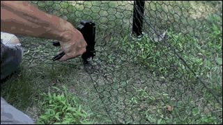 No Dig Dog Fence Diy Dog Fence Dog Proof Fence Dog