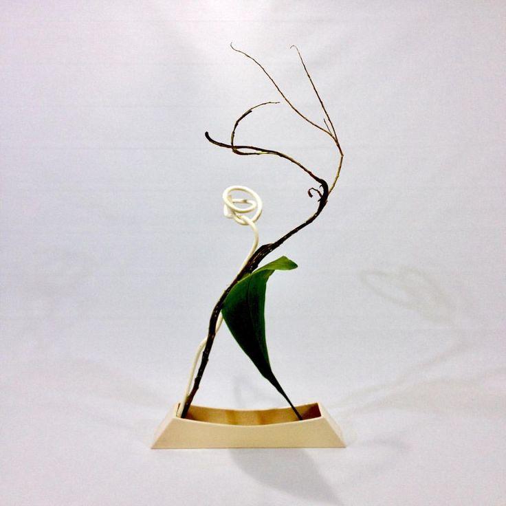 Hanamai Fantail willow, bleached kiwi vine, aspidistra leaf  花舞 石化柳、晒しキウイつる、ハラン  #ikebana #ohararyu #flowers #dancing #japan #japaneseculture #simple #beauty #hanamai #elegant #willow #white #green #いけばな #小原流 #お稽古 #シンプル #花舞 #ダンス #エレガント #石化柳 #白 #緑 #花