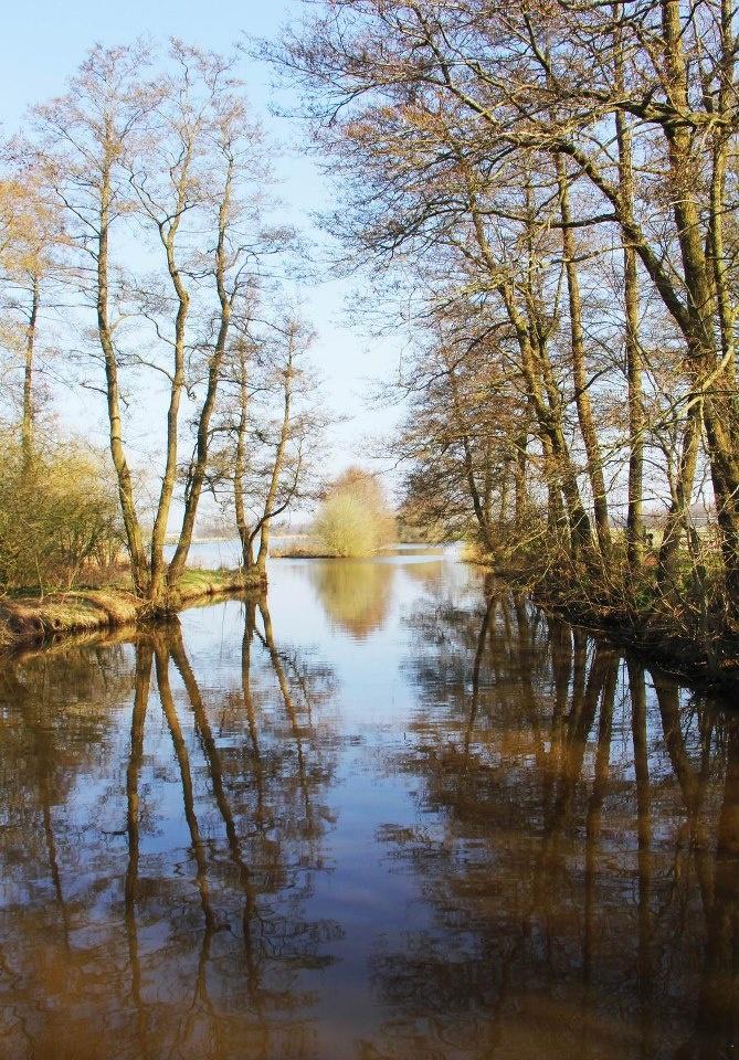 Drentsche Aa, Drenthe. The Netherlands