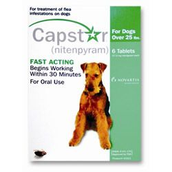 Image of Capstar Large Dog 57 mg 25.1-125 lbs Green 6 Tablet