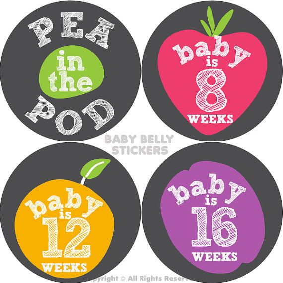 Pregnancy Stickers Maternity Stickers Belly by BabyBellyStickers