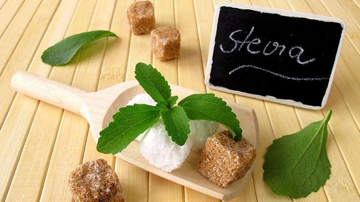 Stevia - a növényi édesítőszer