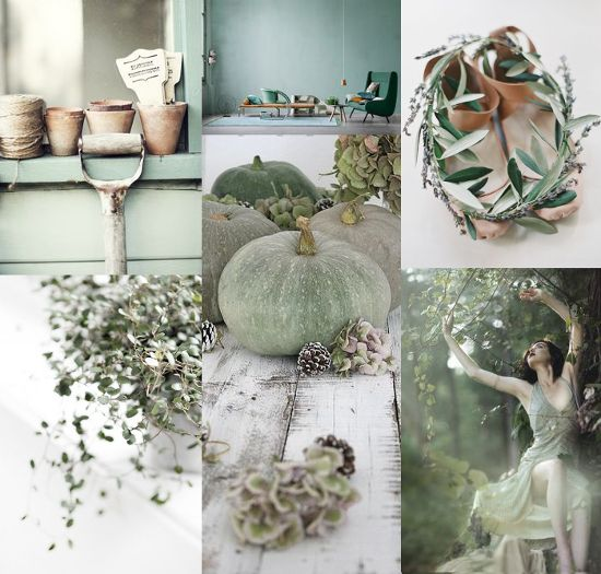 MOOD BOARD⎬SOFT COUNTRY GREEN
