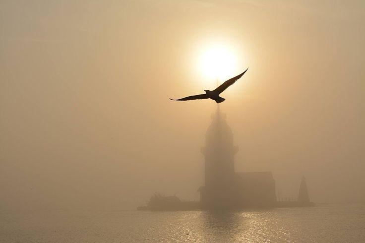 Kız Kulesi, İstanbul (@FotografHD)