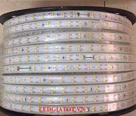 Đèn led dây 2835 2 hàng bóng 120 bóng
