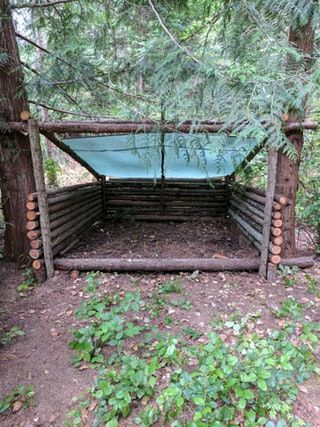 Finally got the roof up and bedding down for my shelter : Bushcraft
