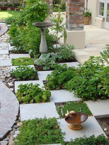 Organize plantings with blocks...Modern Gardens, Gardens Ideas, Garden Ideas, Minis Kitchens, Step Stones, Herbs Gardens, Gardens Design,  Flowerpot, Kitchens Herbs
