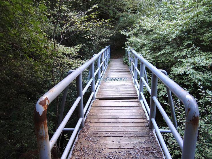 Γεφυράκι στο φαράγγι του Λούσιου