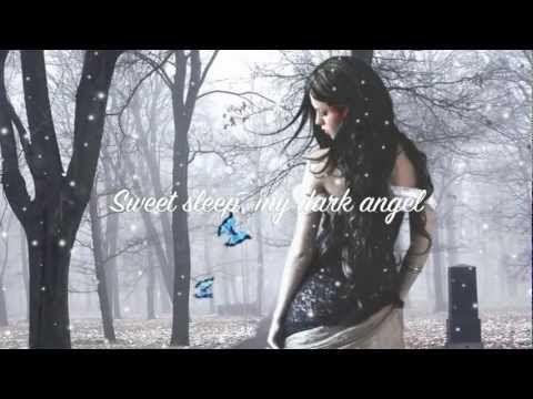 Evanescence~ My Heart Is Broken (lyrics)