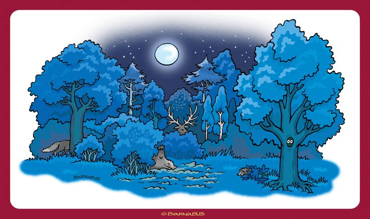 © Barnabus - Książka eRyś zaprasza do lasu 1 ▪ Book eRys Invites You to the #Forest - Las #nocą ▪ Forest at #night.