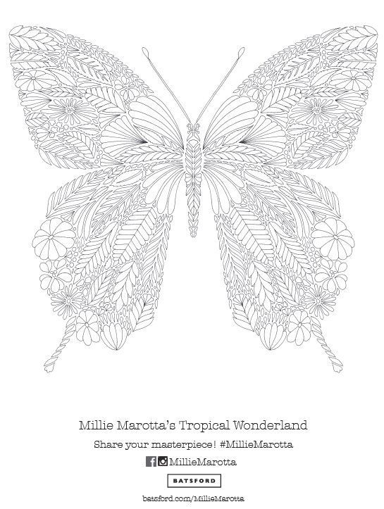 Free Printable Zentangle Butterfly Adult Coloring Page From Millie Marottas Tropical Wonderland Book