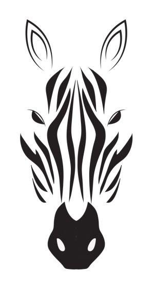 zebra by fashionlady