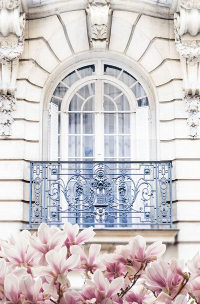 Paris Photography - Magnolia Blossoms under Balcony Fine Art Photograph