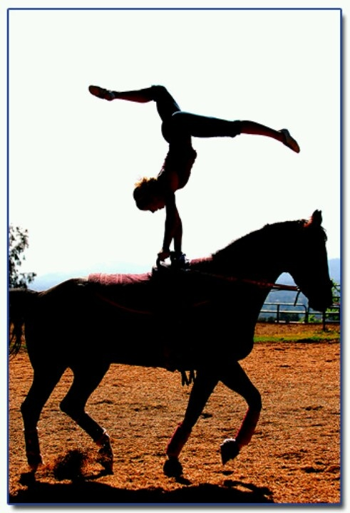 Horse vaulting- astonishing how much trust goes into this. Thats really cool :)