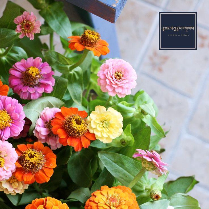 춘천꽃집  꽃으로세상을디자인하다 인스타 @flowersede