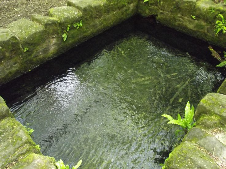 The Well , St Anthony's Well, Mitcheldean in Gloucestershire