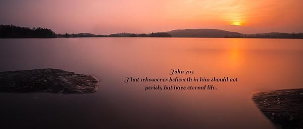 John 3:15 That whosoever believeth in him should not perish, but have eternal life.