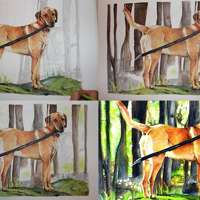 Part two! :) #draw #drawings #instaartist #illustrator #instaartwork #illustration #traditionalartist #traditionalart #sneakpeek #color #colorful #doglover #doglovers #paperart #petlover #pet #arts #art #romanianillustrator #romanianart #coloredpencil #realism #instadaily #artistoninstagram