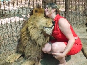 Argentina's wild Lujan Zoo...Supposedly the animals are so tame you can actually pet them!