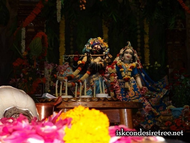 Abhishek to Lord Narsimha on Occasion of Narsimha Chaturdasi at ISKCON Nigdi on 24 May 2013
