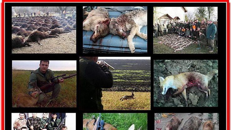 Petition · Rt Hon David Cameron MP: Ban Animal Hunting in the UK https://www.change.org/p/rt-hon-david-cameron-mp-ban-animal-hunting-in-the-uk