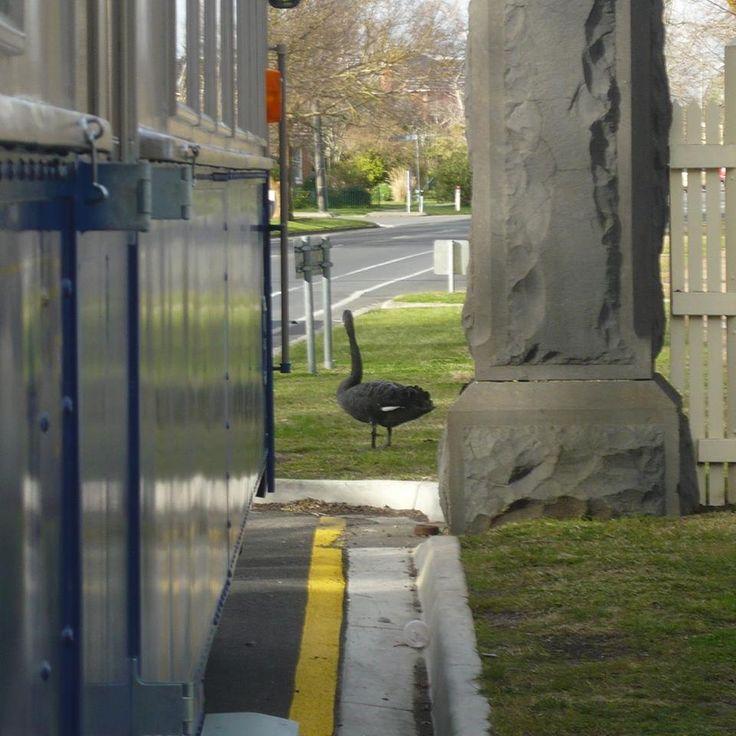 St. Aidan's gateposts