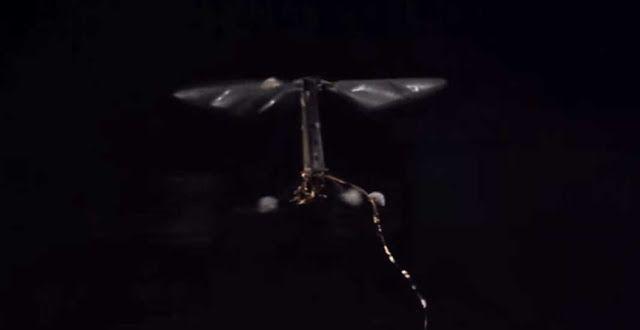 Harvard Sedang Mengembangkan RoboBee Dari Terbang Hingga Menyelam