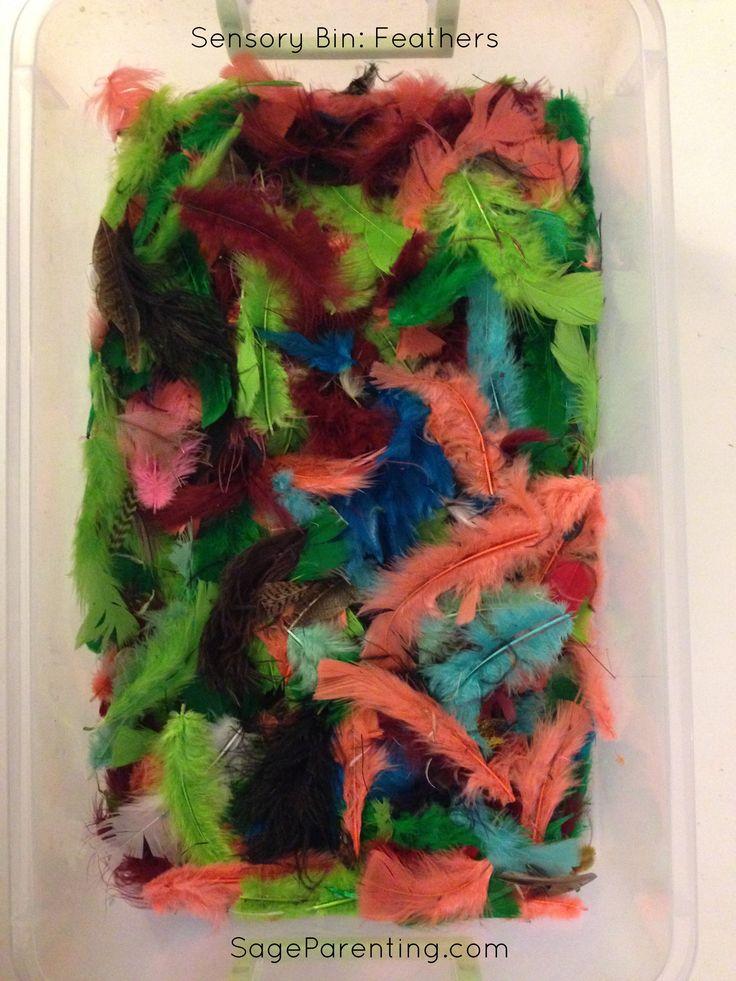 #Homeschool #Playroom #SensoryBin : Feathers