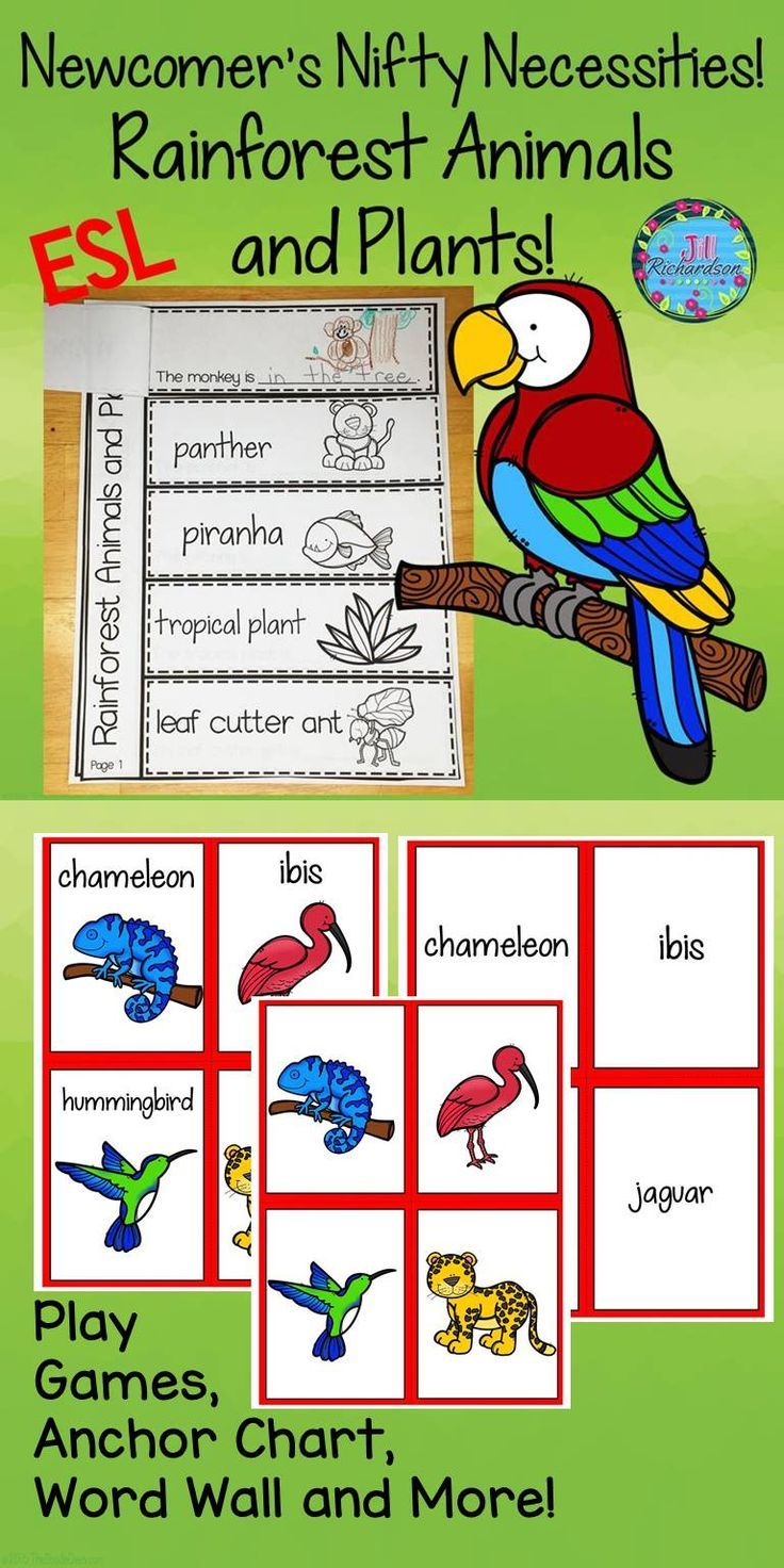 Kollaborative Kindergarten on Word Family Rimes Chart