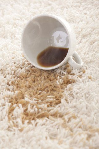 You can remove coffee stains from carpet using only a few common household items you likely have on hand already.