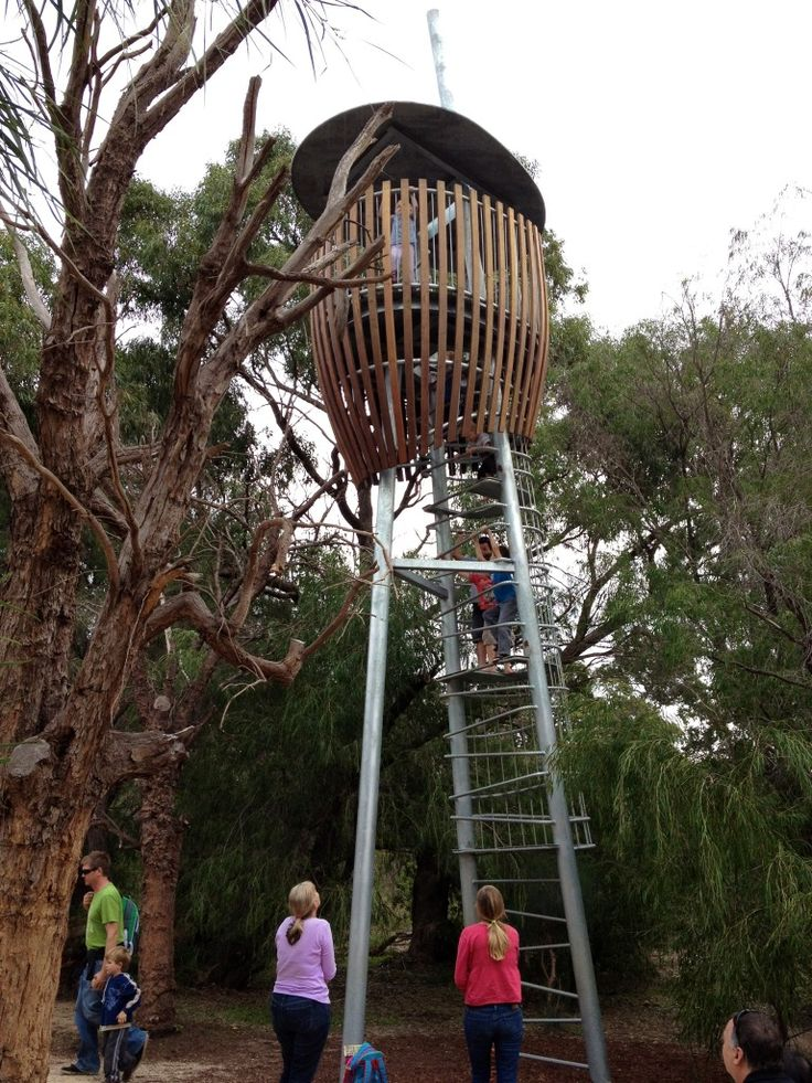 Rio Tinto Naturescape, Kings Park - Blog - Buggybuddys for Families in Perth