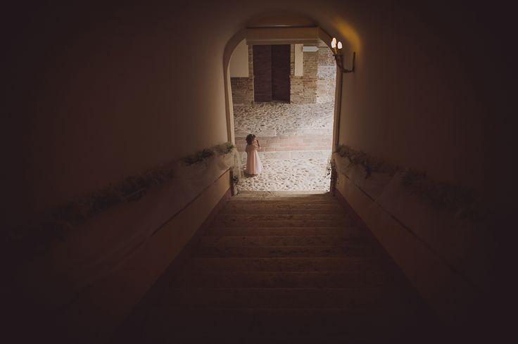 AnDphotography F+M wedding story #andphotography #weddingphotographer #wedding  #flowergirl