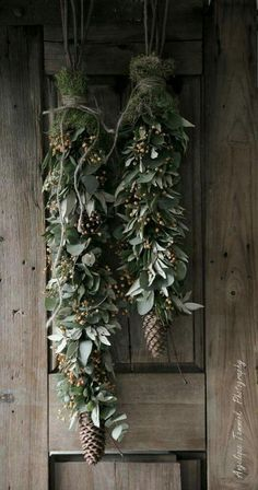 Beautiful mistletoe and pine