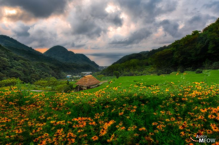 Ishibu Rice Fields