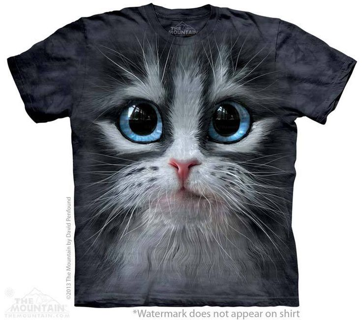 Cutie Pie Kitten T-Shirt - Click image to see hundreds of different animal t-shirts #themountaintees
