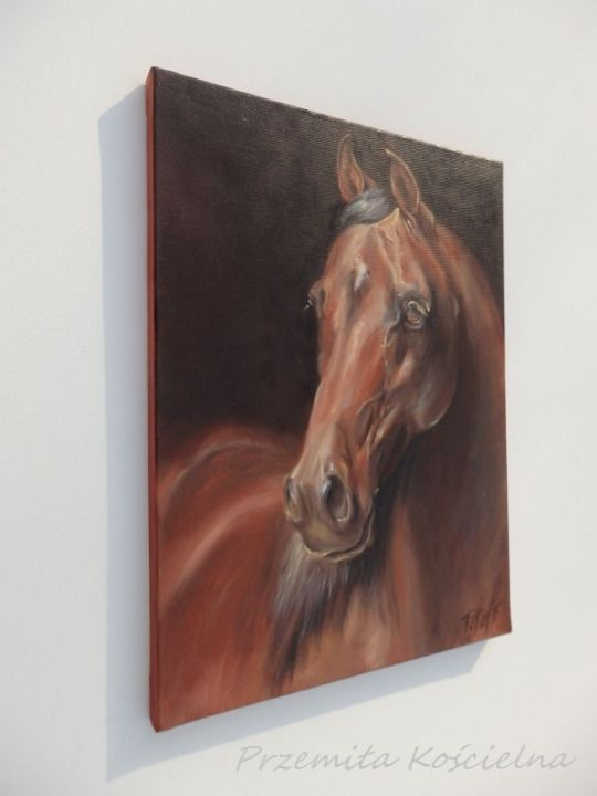 Equne Art.Original oil painting on canvas Brown Horse portrait by CanisArtStudio. Framed . #art #painting #oilpainting #canvas #framed #horse #equineart #equestrian #portrait #petportrait #canisartstudio