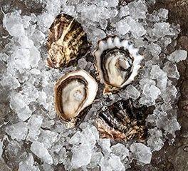 Hog Island Shellfish - Kumamoto   Oysters on Half Shell   #favfoods