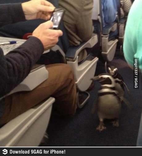Just smile and wave boys, smile and wave.