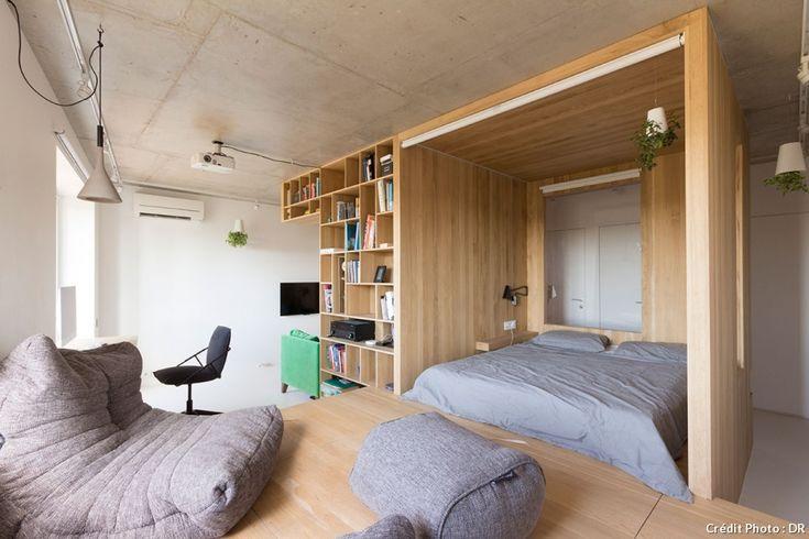 Un deux pièces reconverti en studio de 47 m2 avec un espace nuit, un coin salon un bureau et une bibliothèque.