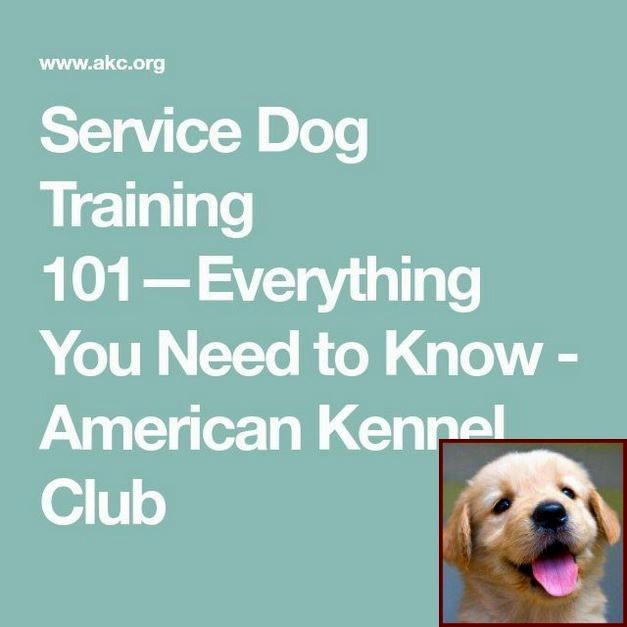 Dog Behavior List And Dog Behavior Journal Dog Training Dog