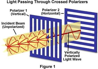 Molecular Expressions: Science, Optics, and You: Light and Color - Polarization of Light