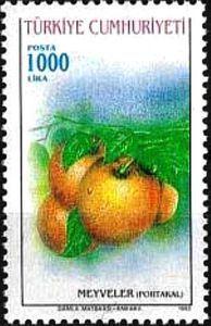 1993 Oranges