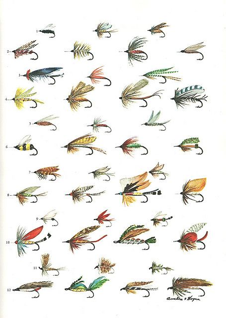 and maybe even have opportunity to learn to tie all of these flies - and then use them! :)